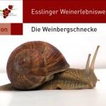 Weg_Fauna