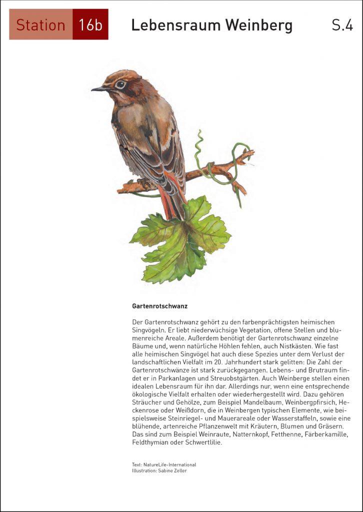Seite16_4