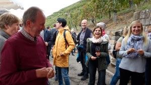 Weinkultur 7