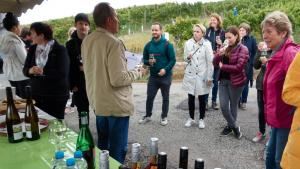 Weinkultur 9